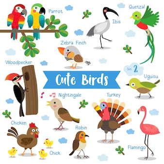 Cute bird animal cartoon avec des noms d'animaux