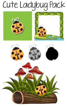 Cute lady bug pack