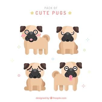 Cute pug collection avec design plat