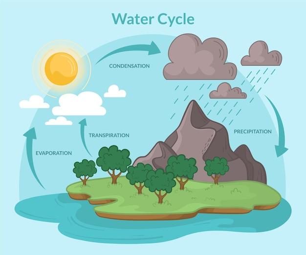 Cycle de l'eau dessiné à la main