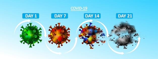 Cycle de vie du virus corona en quelques jours, semaines et mois. covid-19 de la vie jusqu'à la mort. le coronavirus a disparu.
