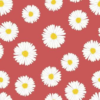 Daisy transparente sur fond rouge