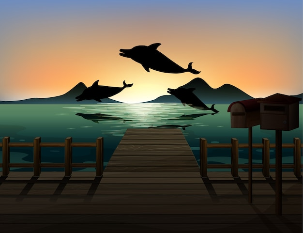 Dauphin dans la silhouette de la scène de la nature