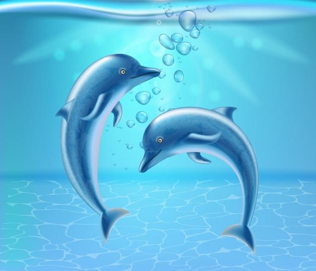 Dauphins sous l'eau