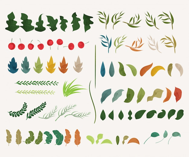 Décoration dessinée à la main de feuilles et d'élément naturel