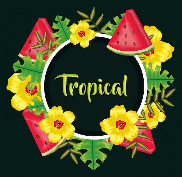 Décoration de fleurs et feuilles de fruits de melon d'eau fraîche