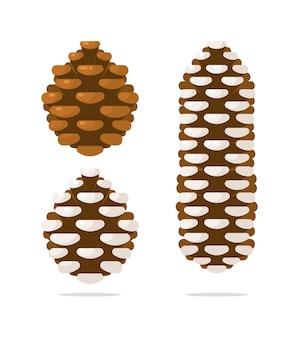 Décoration de noël sapin et pommes de pin sur blanc