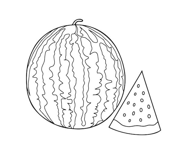 Décrire le dessin vectoriel d'une pastèque et des tranches de pastèque à colorier à côté de pastèque