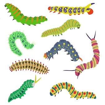 Définir des chenilles lumineuses isolées dessinées à la main larve insectes papillons papillon