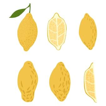 Définir les citrons sur fond blanc. croquis de citron abstrait dessinés à la main entier, tranche, moitié dans l'illustration vectorielle de style doodle.
