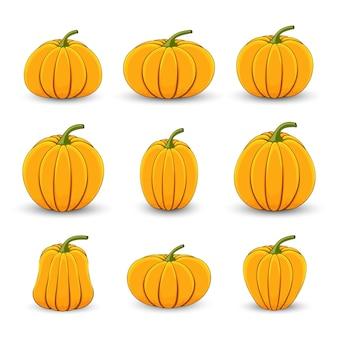 Définir les citrouilles dans différentes tailles et formes