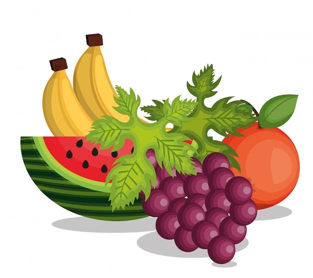 Définir la conception de fruits tropicaux