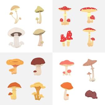 Définir différents champignons isolés illustration en style cartoon.