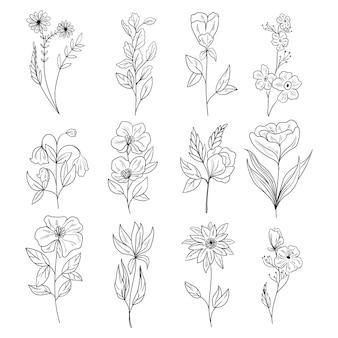 Définir des éléments décoratifs floraux botaniques dessinés à la main