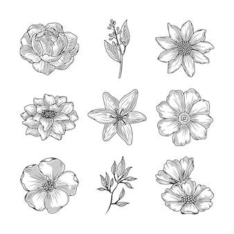 Définir des fleurs nature décoration croquis