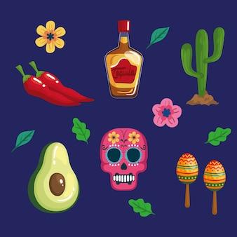 Définir des icônes traditionnelles de cinco de mayo