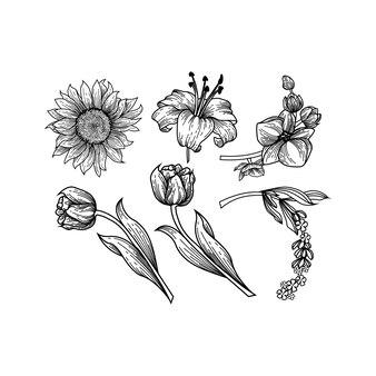 Définir la main de la collection dessiner des fleurs