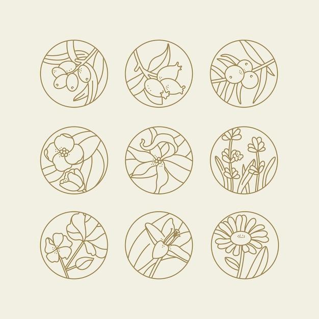 Définir des modèles de conception et des emblèmes d'huiles saines et cosmétiques