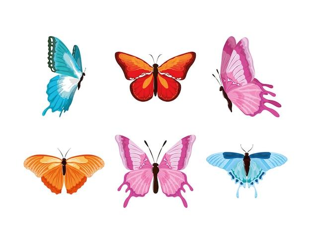 Définir des papillons aquarelles