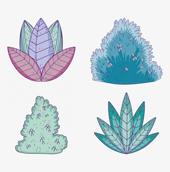 Définir des plantes avec des feuilles et des arbustes