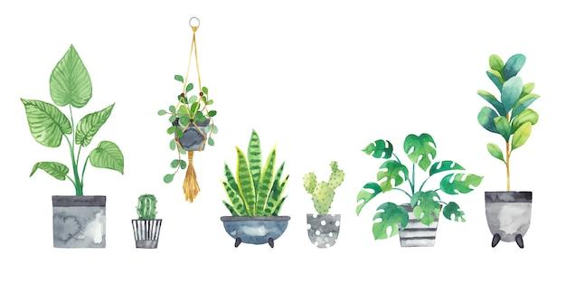 Définir les plantes d'intérieur dans des pots peints à l'aquarelle