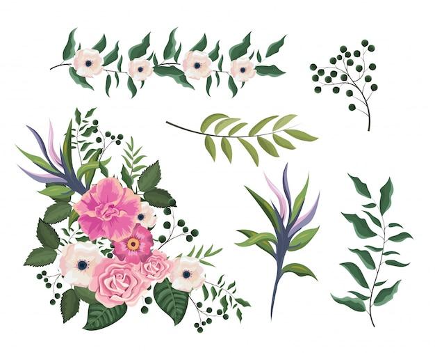 Définir des plantes roses et fleurs avec des feuilles branches