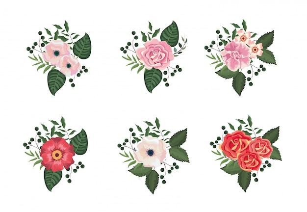 Définir des plantes tropicales de fleurs et de roses avec des feuilles