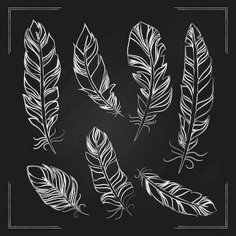 Délicates plumes d'oiseaux dessinés à la main avec de la craie sur un tableau noir dans un contour blanc montrant la structure de la girouette et des barbes plumeuses avec des bordures d'angle au format carré