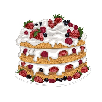 Délicieux gâteau bisquit aux baies