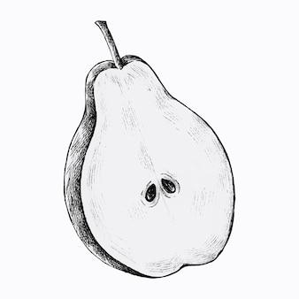 Demi-coupe de vecteur de poire dessiné à la main