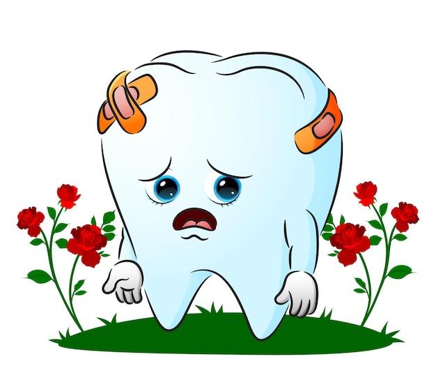 La dent malade avec beaucoup de couverture de plaie par le plâtre d'illustration