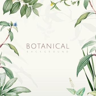 Design de fond de feuilles botaniques vert