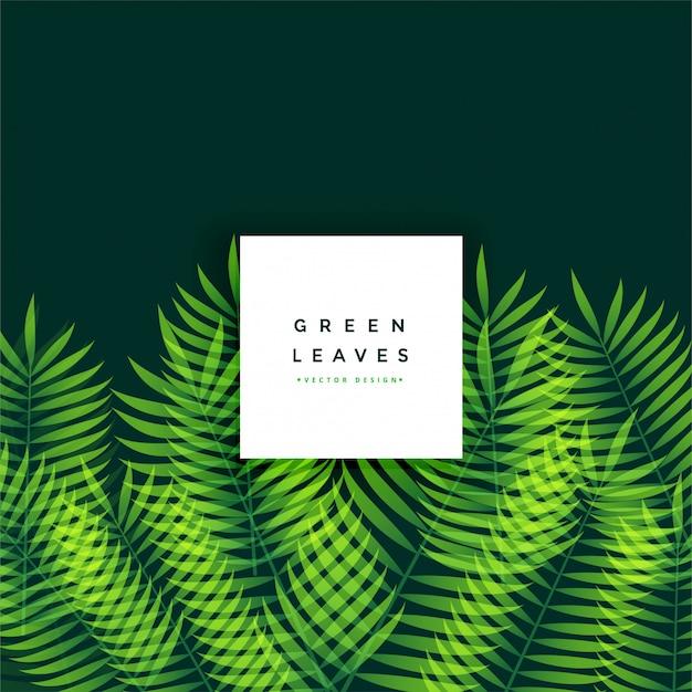 Design de fond impressionnant de feuilles vertes