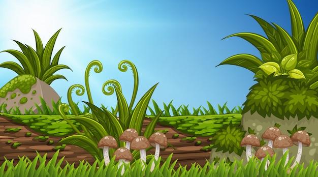 Design de fond de paysage en rondins de bois aux champignons