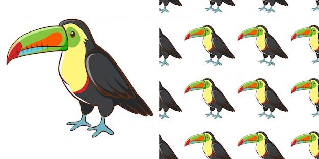 Design de fond sans couture avec mignon toucan