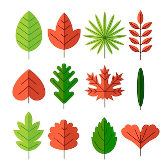 Design plat de la collection de feuilles