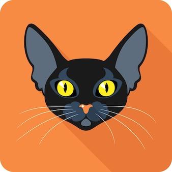 Design plat icône bombay black cat