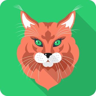 Design plat d'icône de chat maine coon (american longhair)
