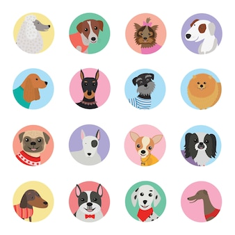 Design plat icône chiens