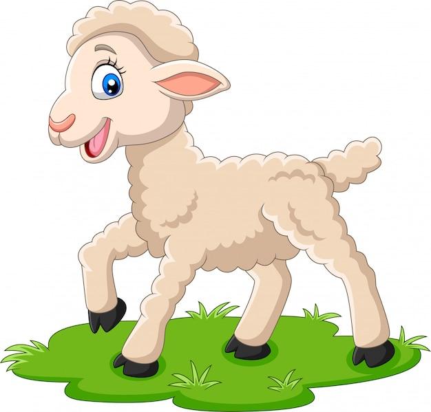 Dessin animé d'agneau heureux sur l'herbe