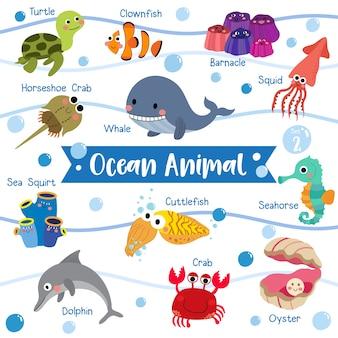 Dessin animé animal de l'océan avec le nom de l'animal