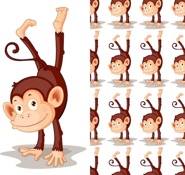 Dessin animé animal singe isolé
