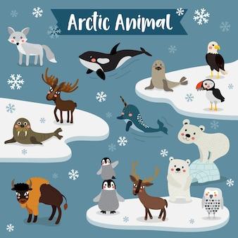 Dessin animé animalier arctique