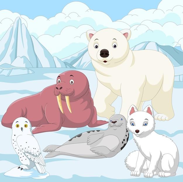 Dessin animé des animaux de l'arctique avec fond de champ de glace