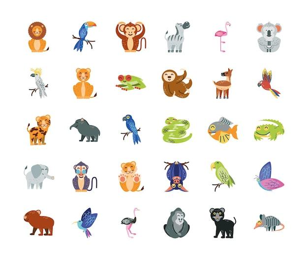 Dessin animé, animaux tropicaux, vie sauvage