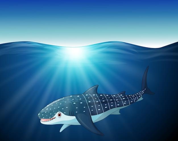 Dessin animé baleine-requin sur la mer