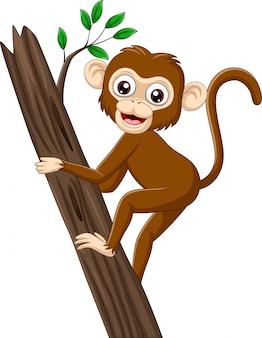 Dessin animé bébé singe grimpant une branche d'arbre