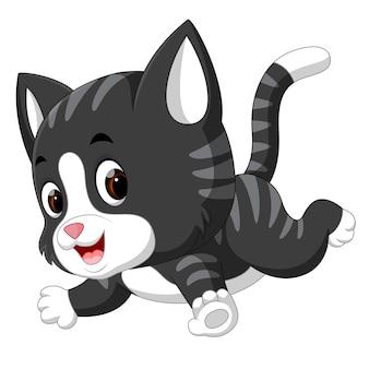 Dessin animé chat mignon