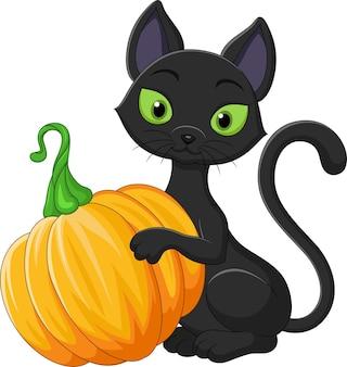 Dessin animé, chat noir, tenue, citrouille