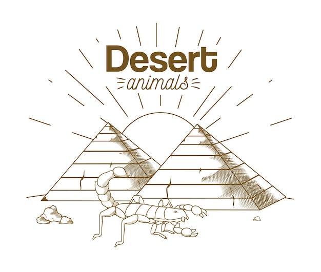 Dessin animé de dessin à la main des animaux du désert